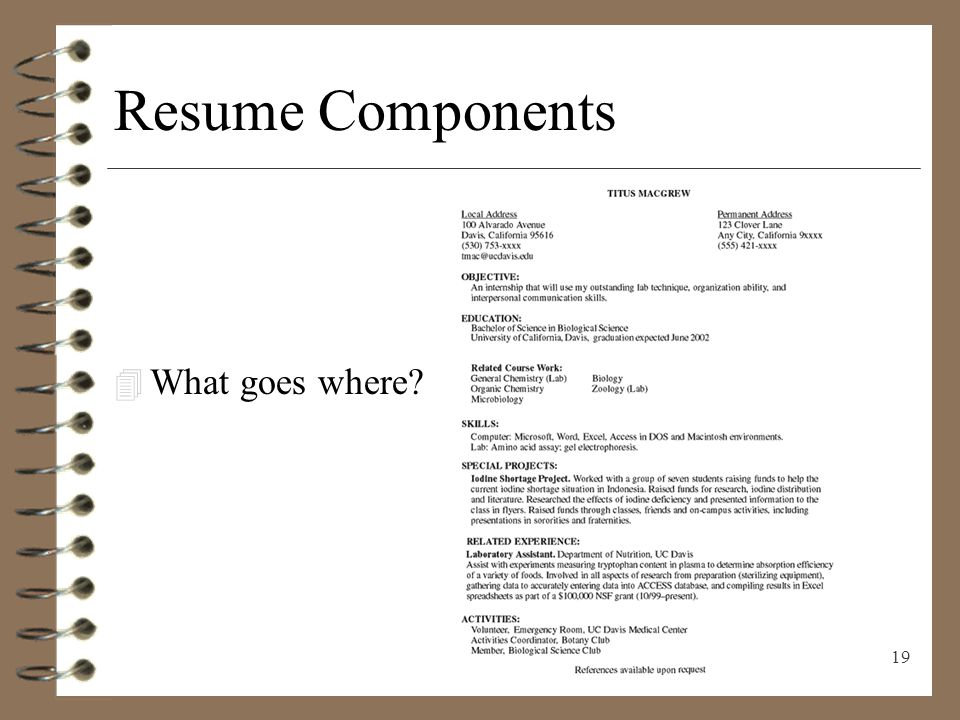 dental assistant resume sle pdf cfo sle resume vp