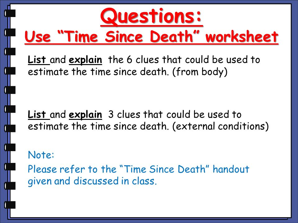 Questions: Use Time Since Death worksheet