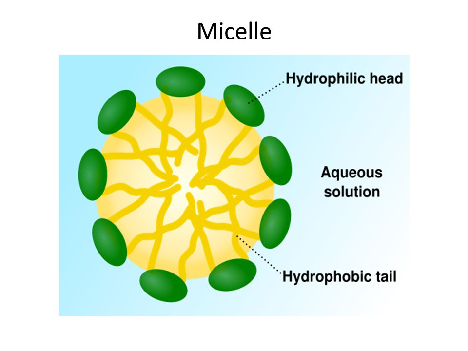 Micelle