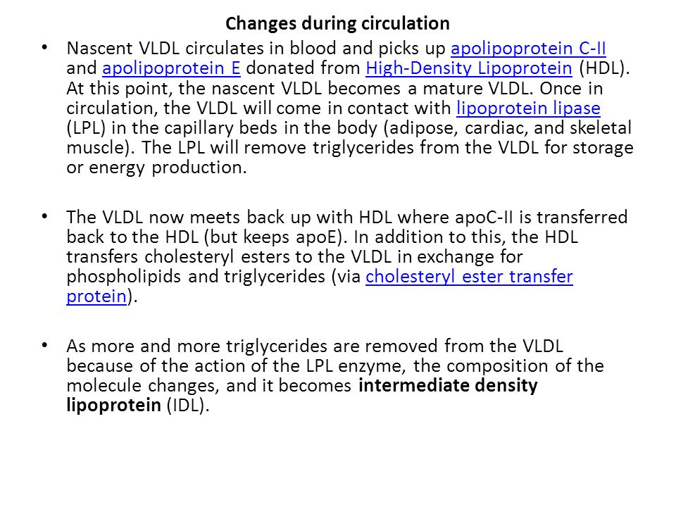 Changes during circulation