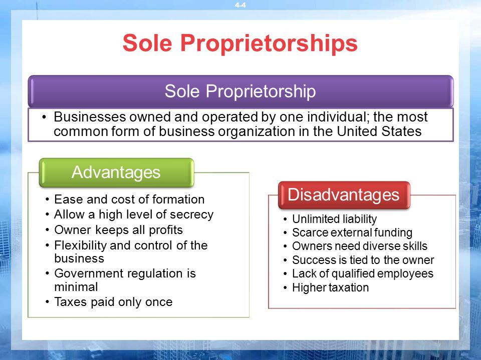 sole proprietorships essay