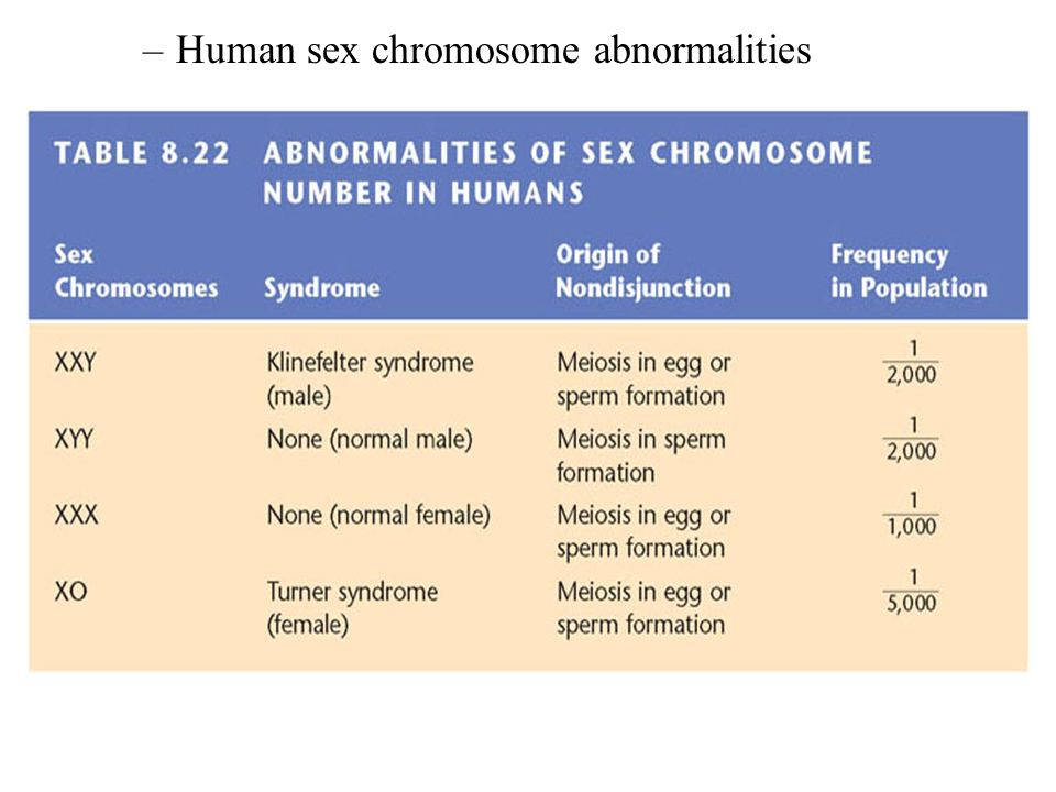What Are The Sex Chromosomes Of A Hermaphrodite?