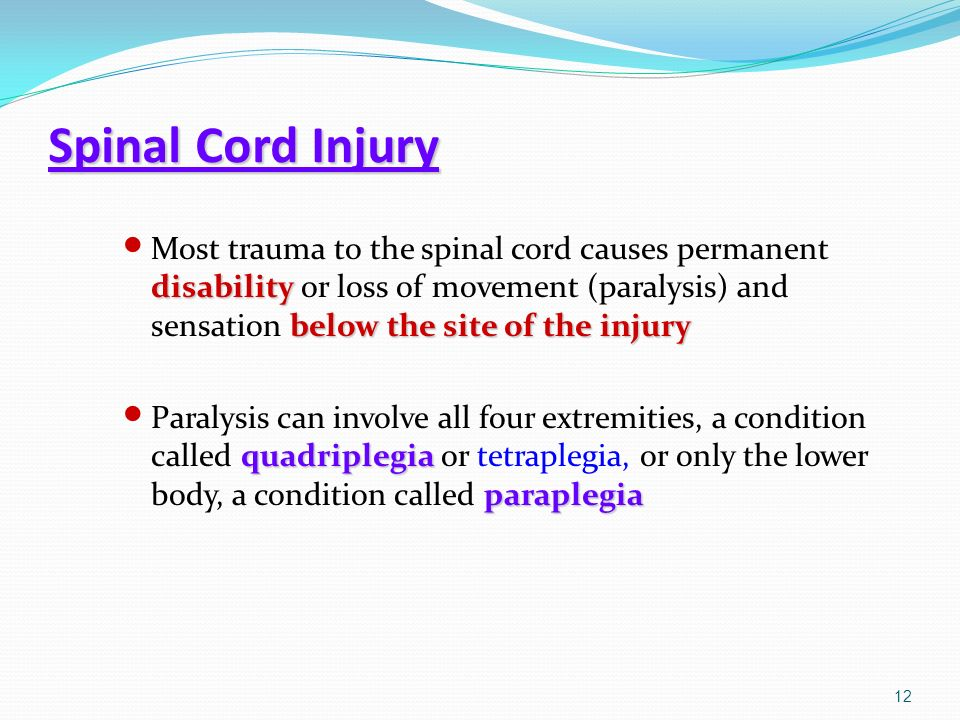 spinal cord injury paralized