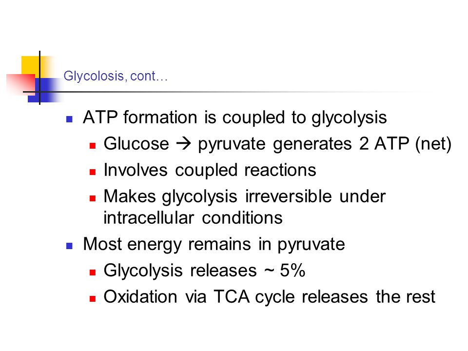 atp formation is coupled to electron The electron transport chain is the main source of atp production in the body  and as such is vital for life the previous stages of respiration.