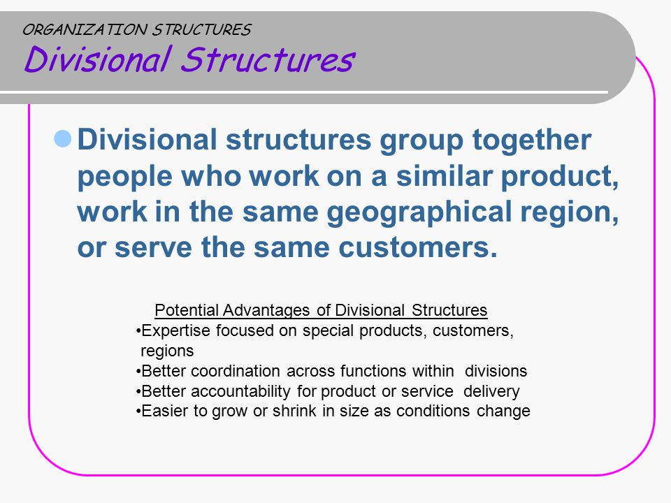ORGANIZATION STRUCTURES Divisional Structures