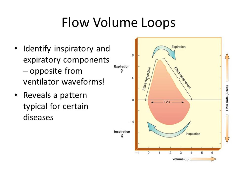 Flow Volume Loops Identify inspiratory and expiratory components – opposite from ventilator waveforms!