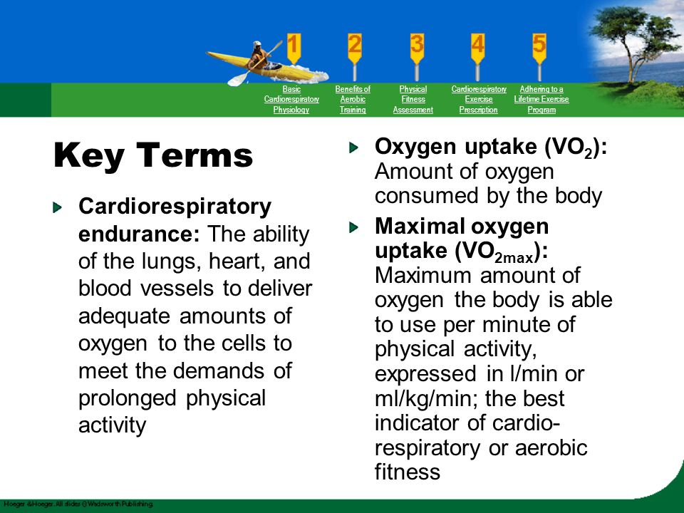physiology of physical activity International journal of physiology, nutrition and physical education considers  review and research articles related to: adapted physical activity, aerobic.