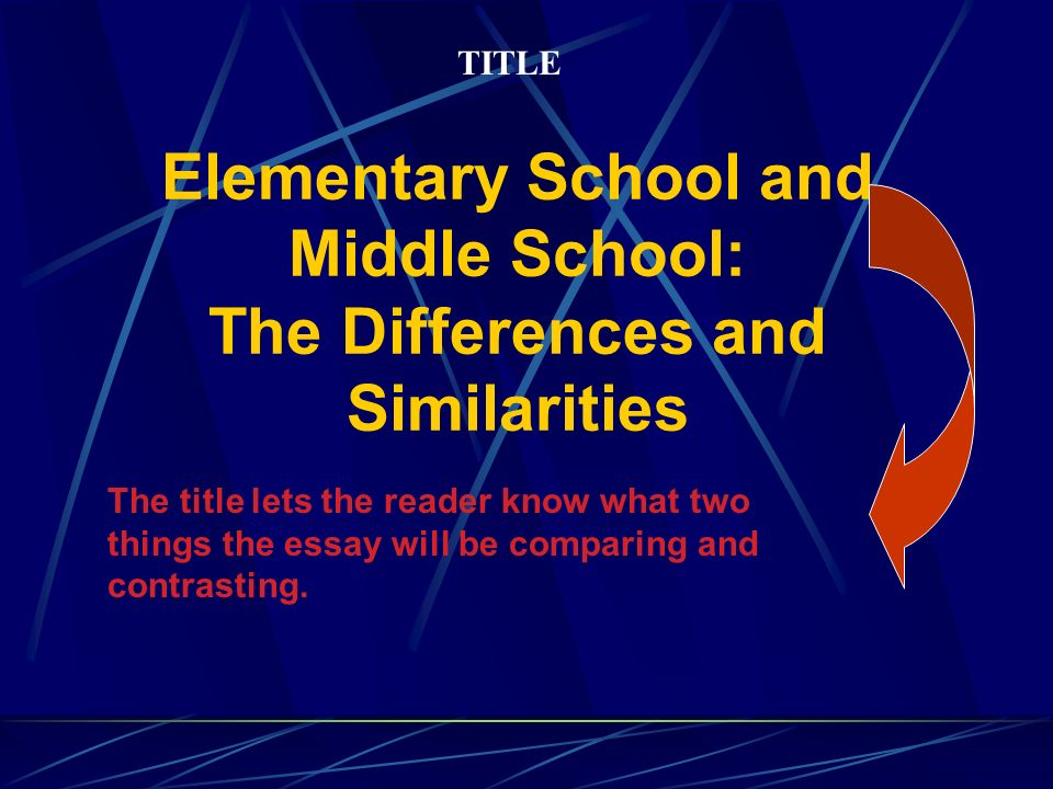 compare and contrast sample essay ppt video online  elementary school and middle school the differences and similarities