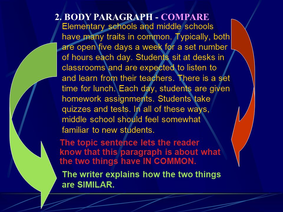 compare and contrast sample essay ppt video online body paragraph compare