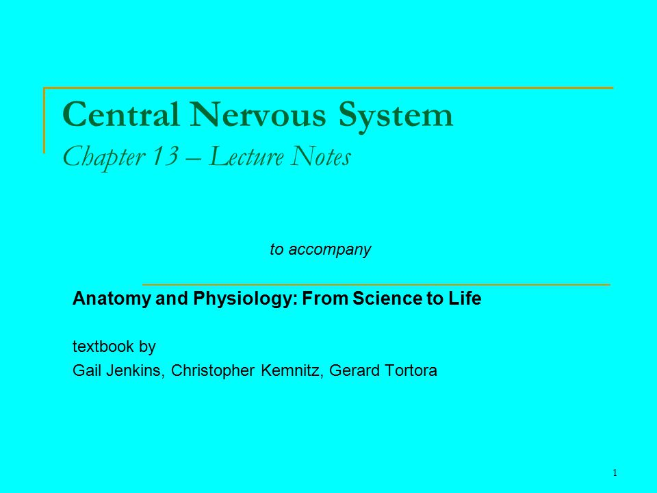 Central Nervous System Chapter 13 – Lecture Notes - ppt video online ...