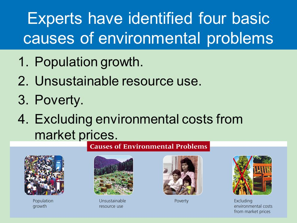 Problems that city causes for people and environment