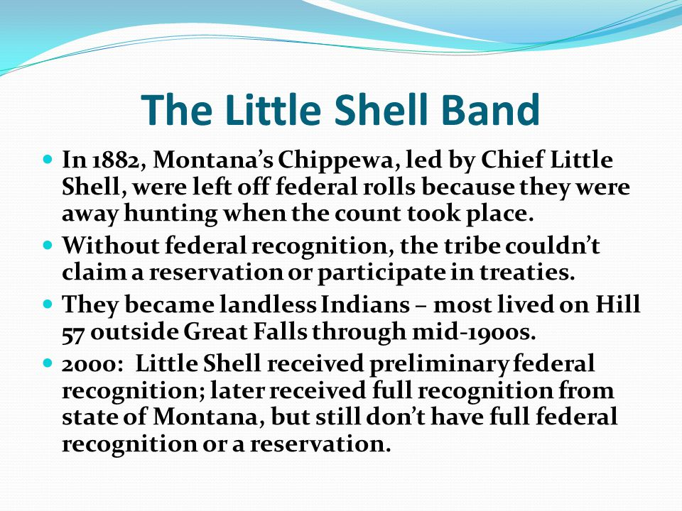 The Little Shell Band