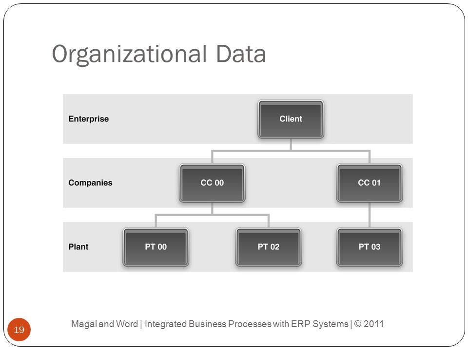 Organizational Data Magal and Word | Integrated Business Processes with ERP Systems | © 2011