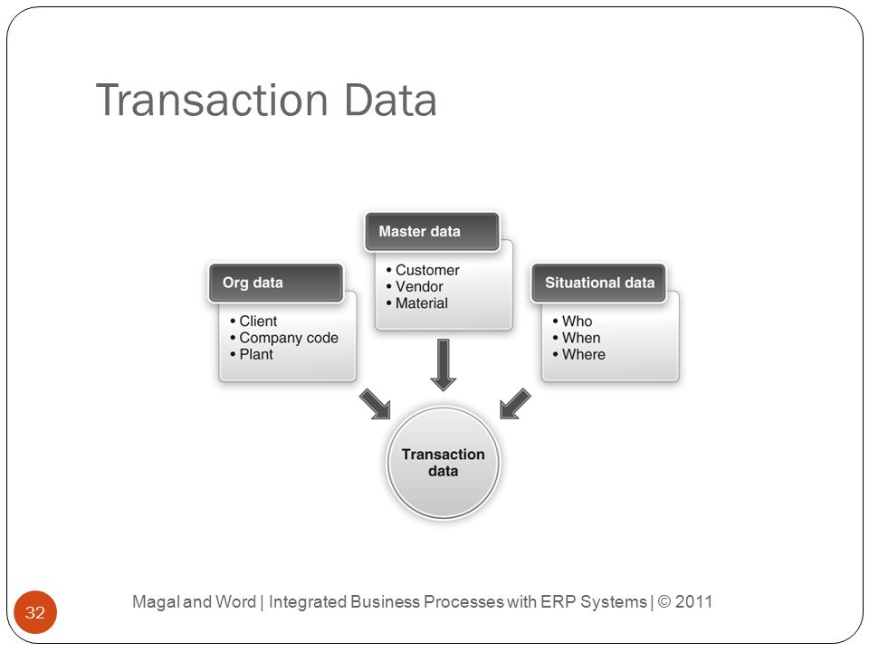 Transaction Data Magal and Word | Integrated Business Processes with ERP Systems | © 2011