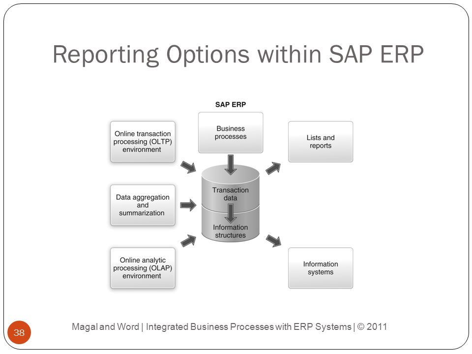 Reporting Options within SAP ERP