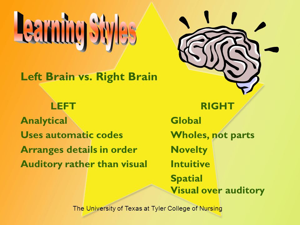 Right Brain vs. Left Brain