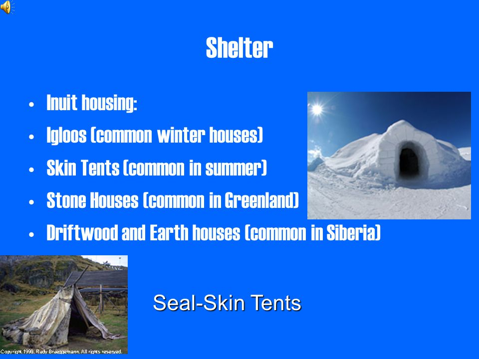 inuit housing essay example Disclaimer: this essay has been submitted by a student this is not an example of the work written by our professional essay writers you can view samples of.