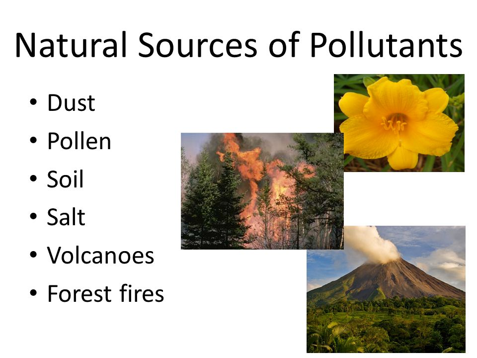 Natural Sources of Pollutants