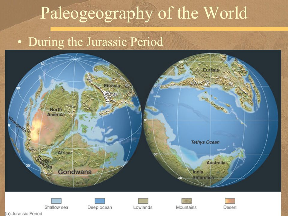 Chapter 14 mesozoic earth history million years ago triassic during the jurassic period paleogeography of the world gumiabroncs Images