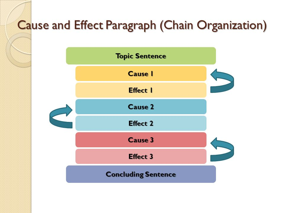 block organization of essay Organize, organize, organize there are 2 ways to successfully organize a compare/contrast essay ☛ the first structure is called block organizationwith block organization, your essay will have four paragraphs.