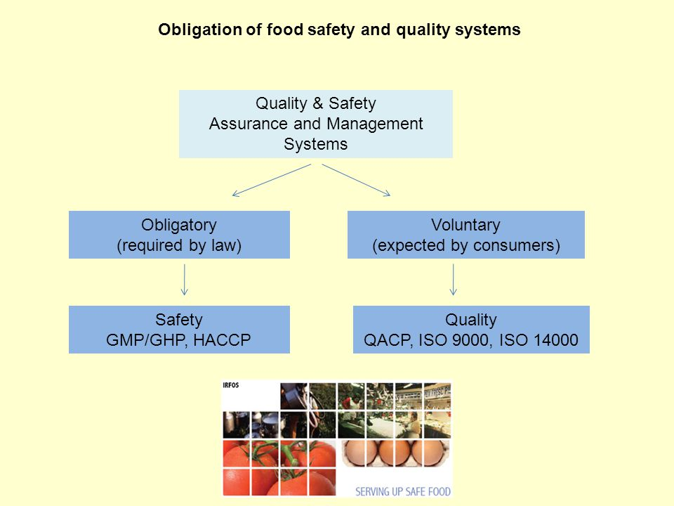 Good Practices Of Food Chain In Polish Food Industry Ppt