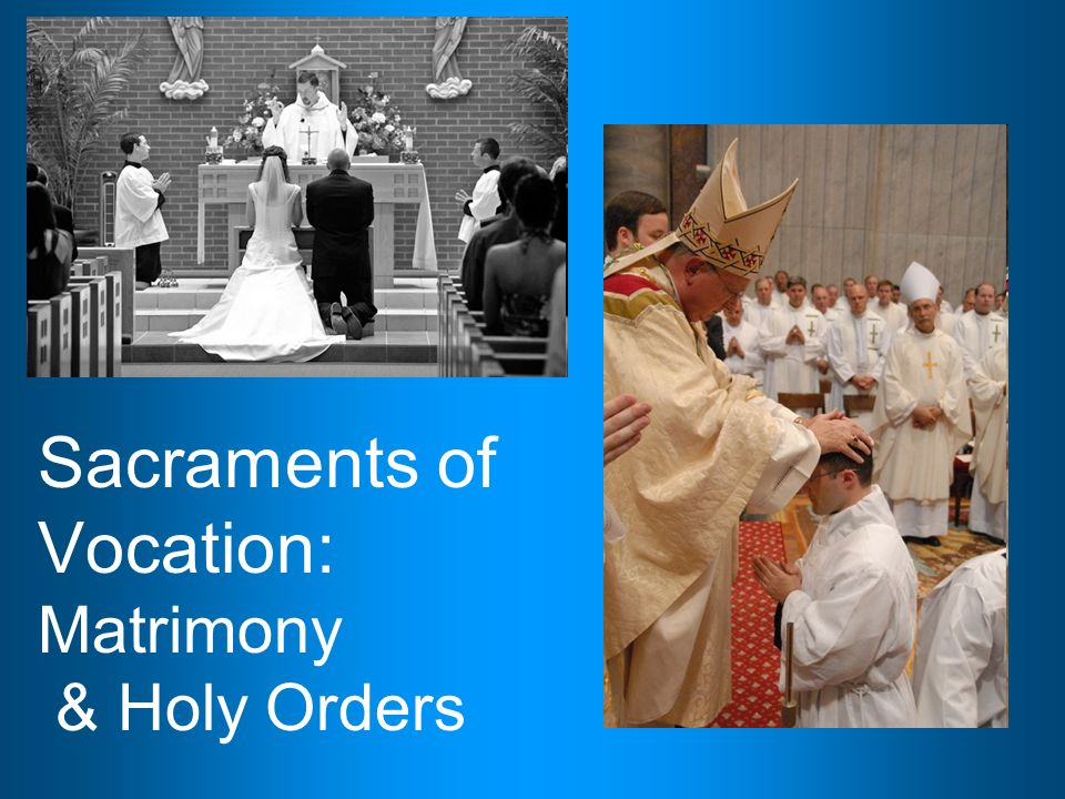 religion education matrimony and holy orders The archdiocese of newark takes very seriously any and all complaints of sexual misconduct by members of the clergy, religious and lay staff of the archdiocese we encourage anyone with knowledge of an act of sexual misconduct to inform the archdiocese immediately so that we may take appropriate actions to protect others.