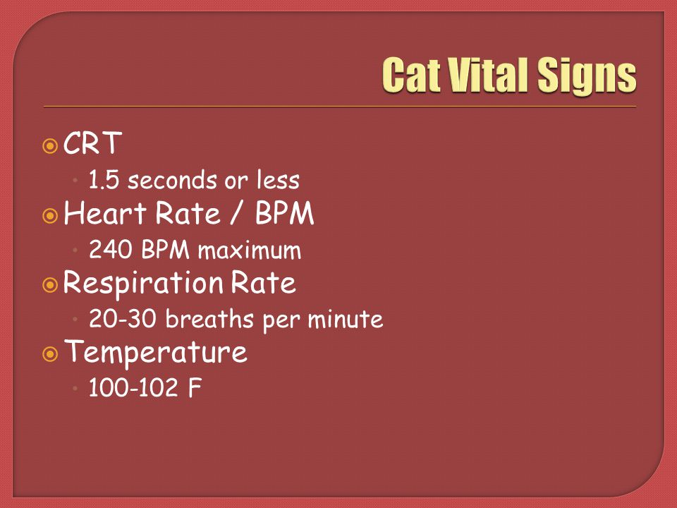 Animal Healthmanagement  Ppt Video Online Download. Nsclc Signs. Union Signs Of Stroke. Menopausal Signs Of Stroke. Learning Signs. Wise Signs Of Stroke. Whitewashed Wood Signs Of Stroke. Jiroveci Pneumonia Signs. 21st November Signs