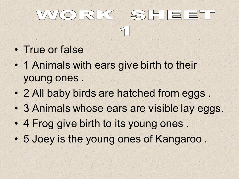 WORK SHEET 1 True or false