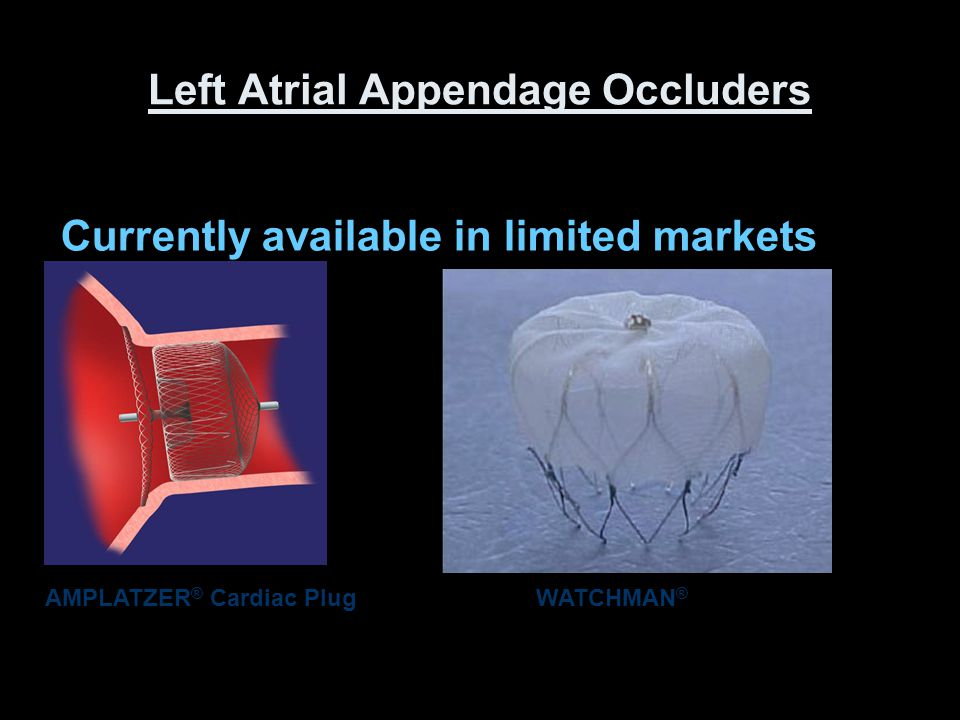 Left Atrial Appendage Occluders