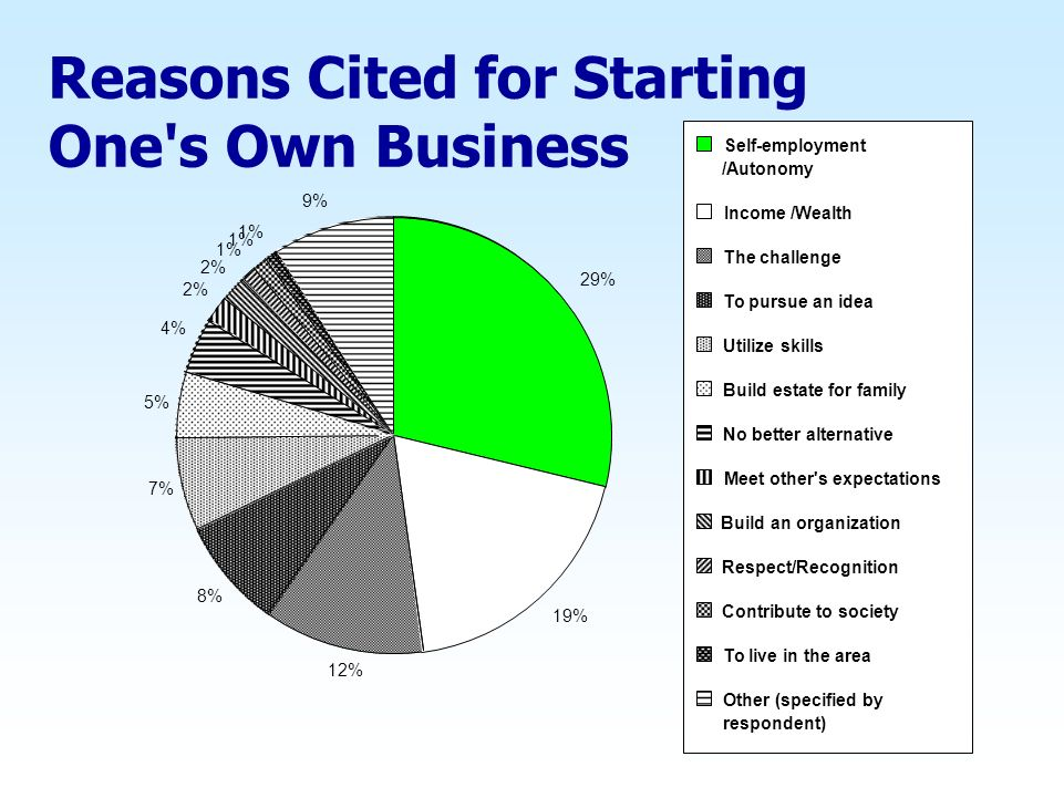Reasons Cited for Starting One s Own Business