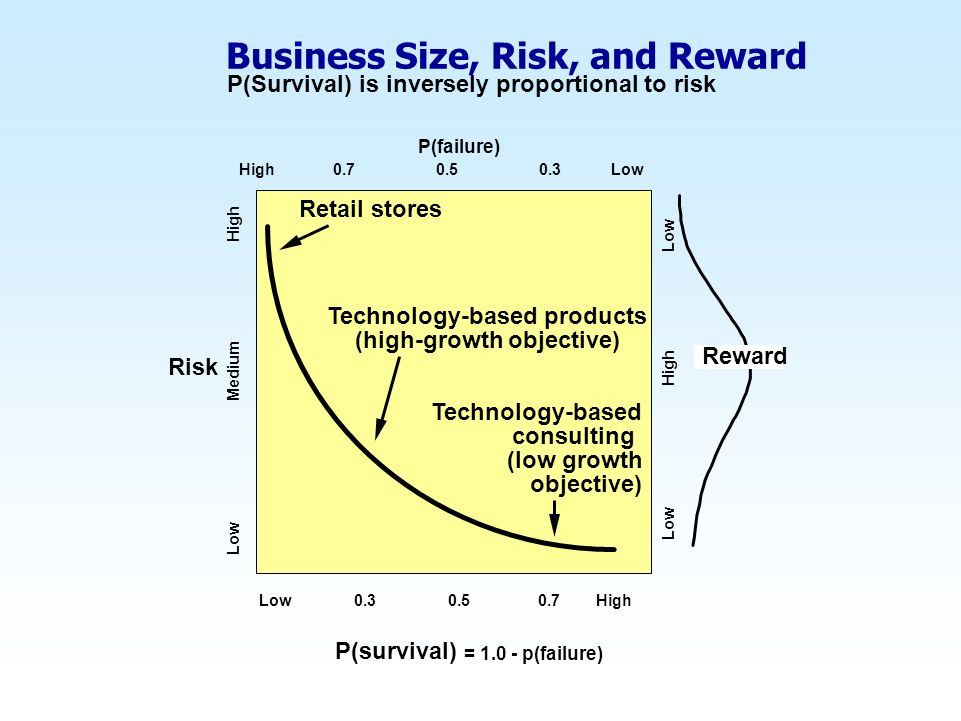 Business Size, Risk, and Reward