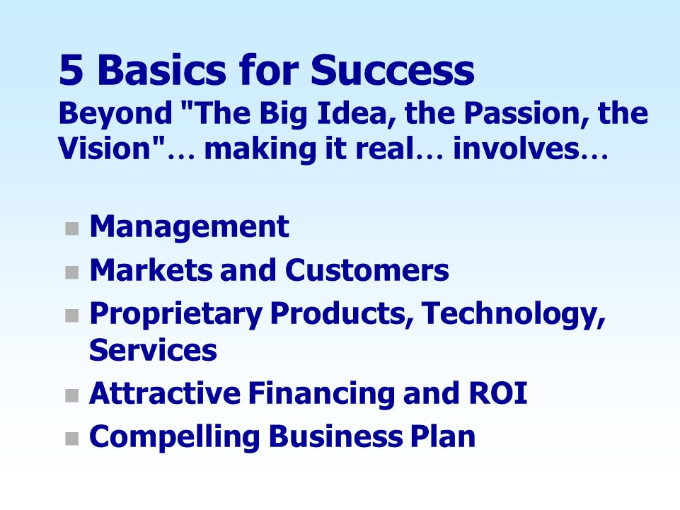 5 Basics for Success Beyond The Big Idea, the Passion, the Vision … making it real… involves…