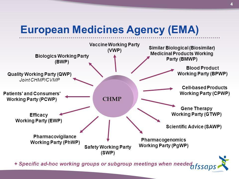 European Recruitment Agency, Recruitment Agency in Europe ...