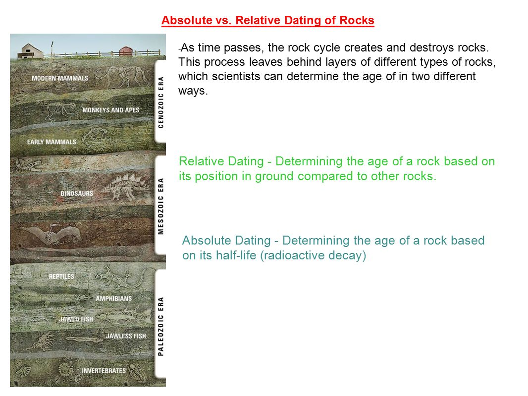 compare the processes of relative dating and radioactive dating to determine the age of fossils
