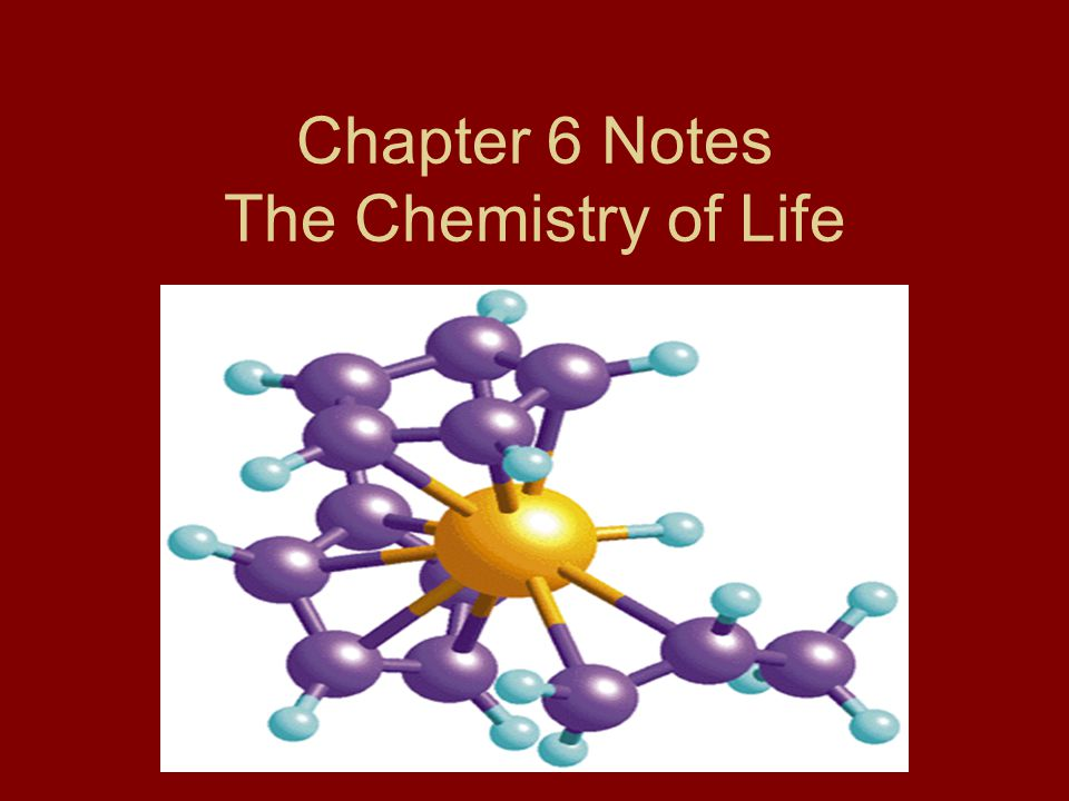 Chapter 6 Notes The Chemistry of Life