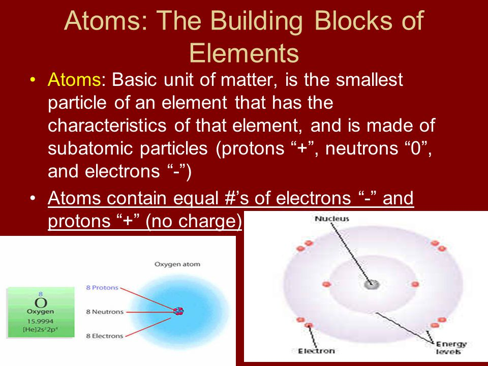 Atoms: The Building Blocks of Elements