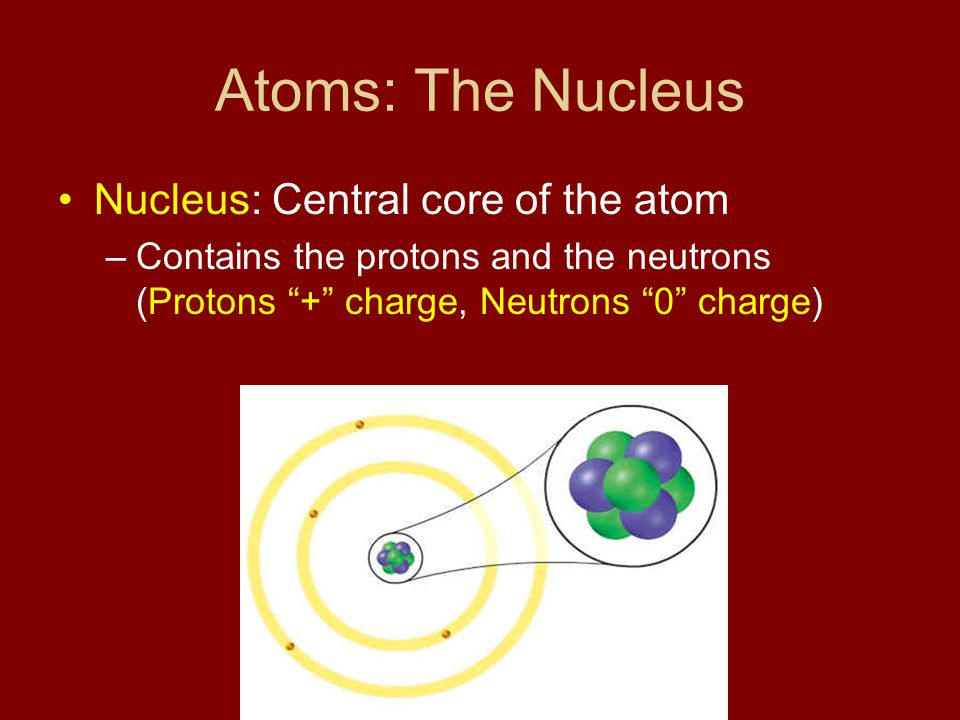 Atoms: The Nucleus Nucleus: Central core of the atom
