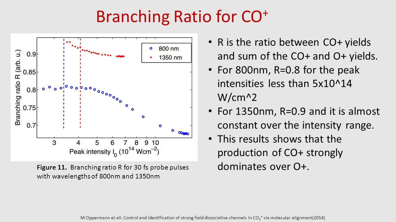 Branching Ratio for CO+
