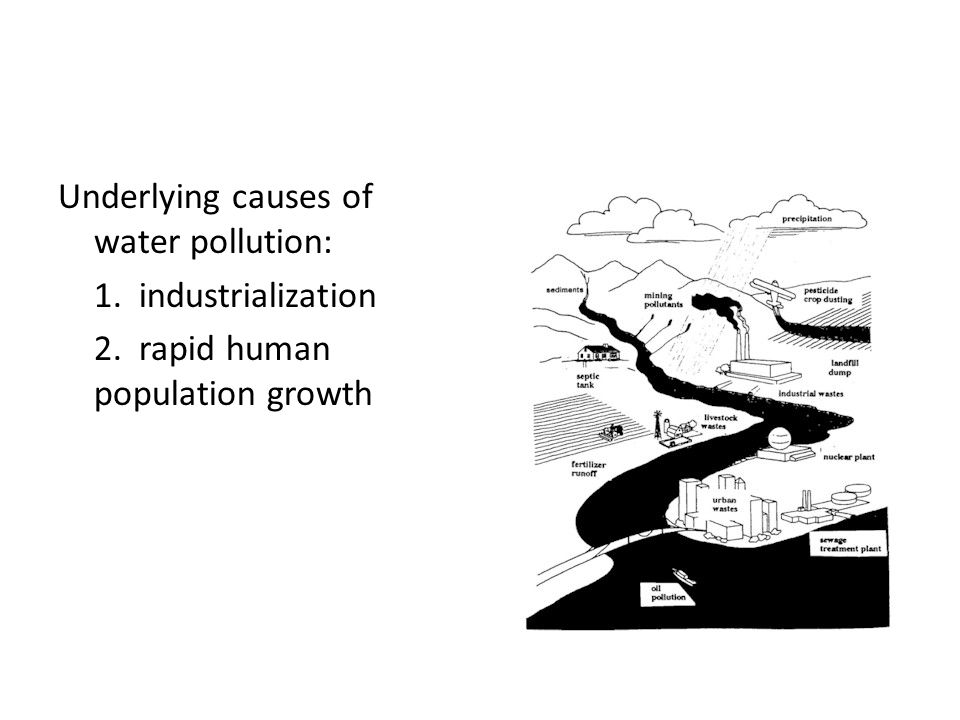 causes of water population Water pollution affects marine ecosystems, wildlife health, and human well-being following are causes of water pollution and the effects it has on human health and the natural environment.