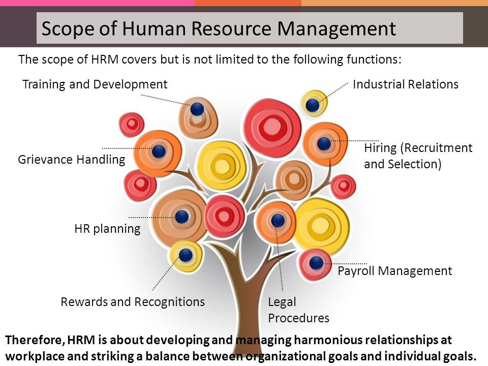 scope of hrd The human resources field can be fast-paced, challenging and rewarding generally, hr managers have attributes such as outstanding speaking and writing skills, the ability to work under pressure and leadership qualities such as strong work ethic, trustworthiness, self confience and the ability to delegate responsibilities.