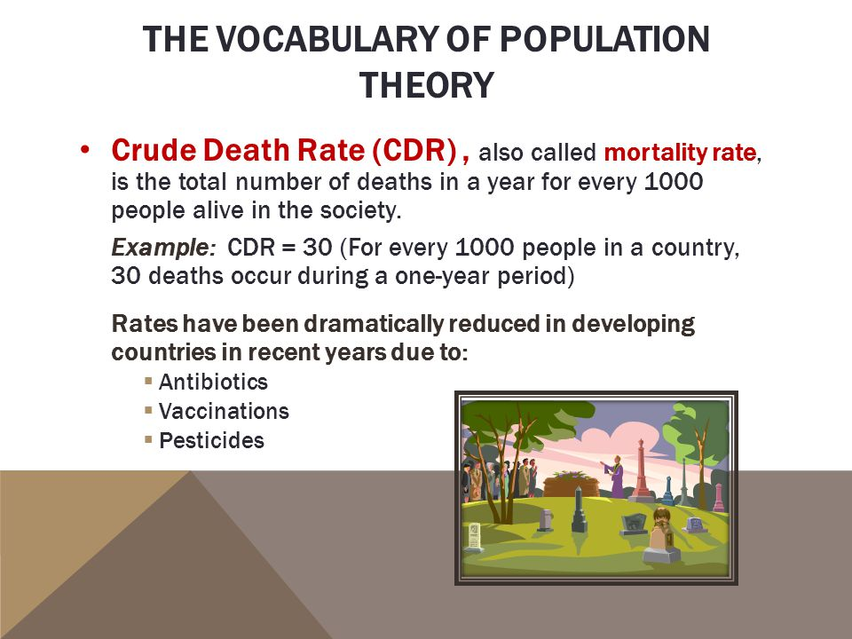 the population theory A theory coined by sports talk show host tony kornheiser referring to international soccer according to the population theory, the country with the larger population should have more players to chose from, and therefore be better than a team with a smaller population.