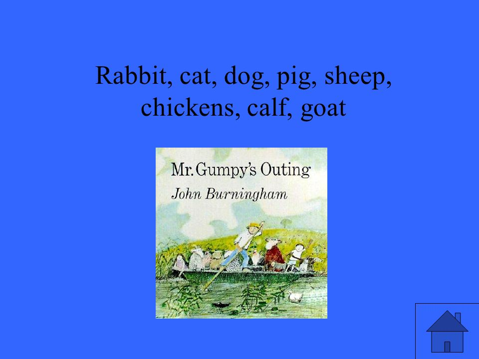 Rabbit, cat, dog, pig, sheep, chickens, calf, goat