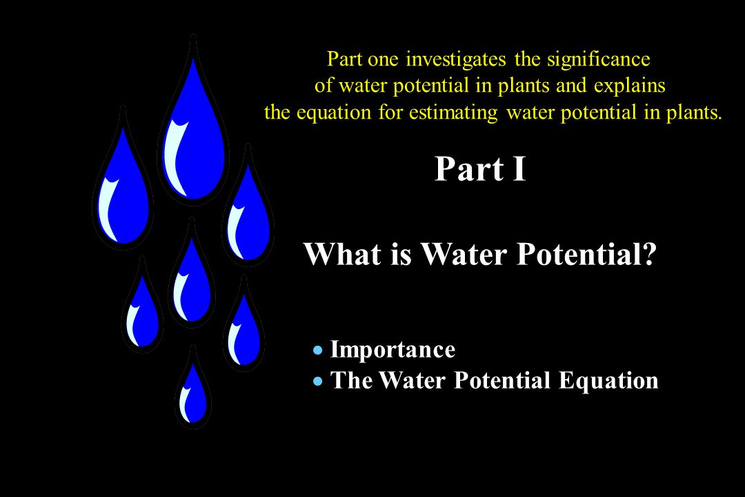 water potential in plants pdf