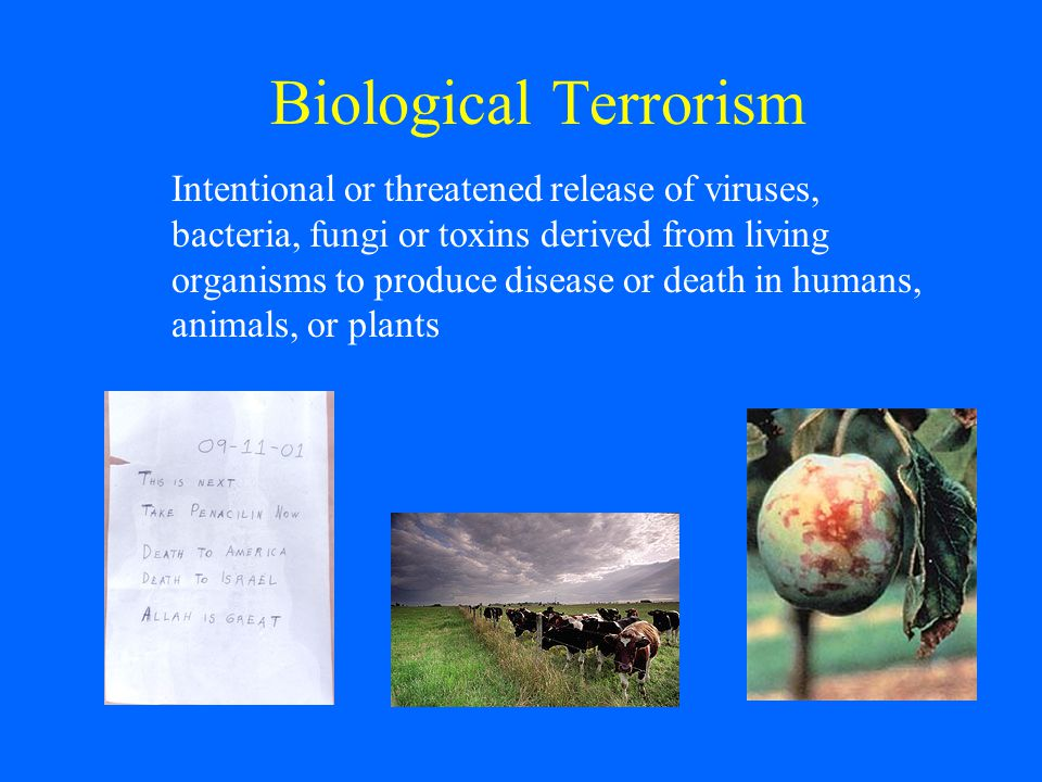 a study on bio terrorism Let us find you another essay on topic bio-terrorism/anthrax outline for free send me essays.
