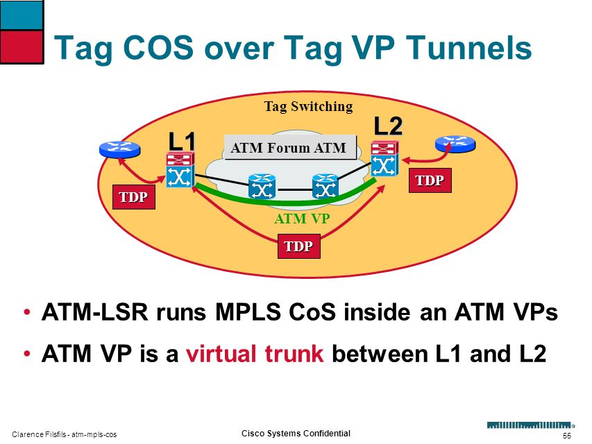 Tag COS over Tag VP Tunnels