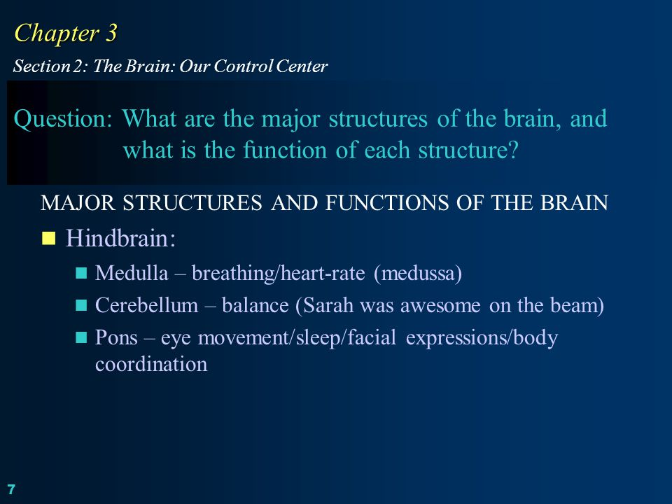 Chapter 3 Section 2: The Brain: Our Control Center.