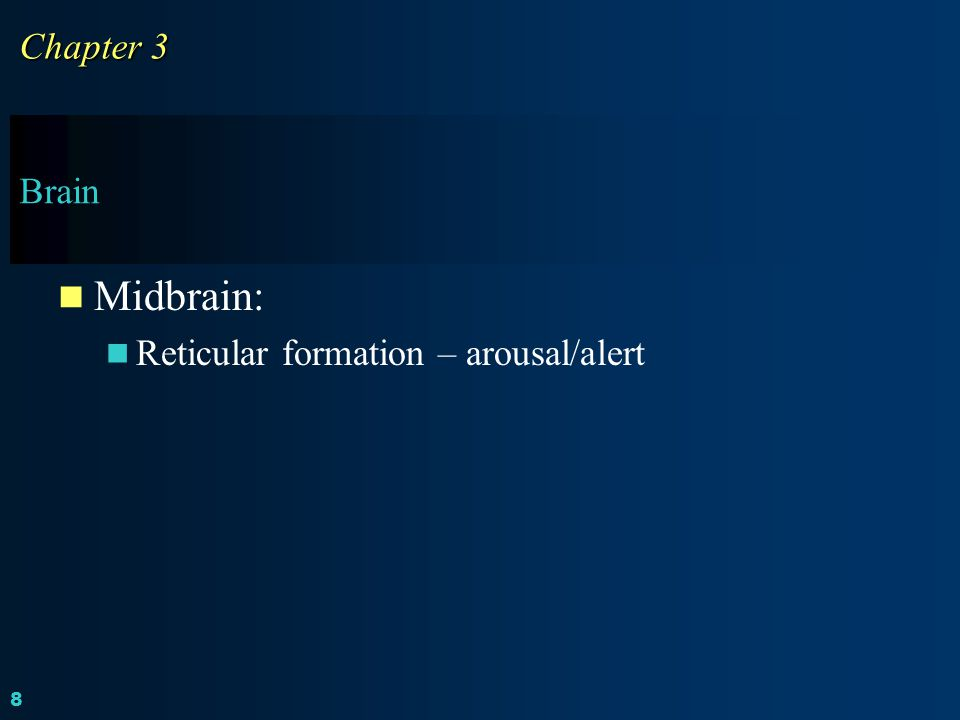 Chapter 3 Brain Midbrain: Reticular formation – arousal/alert