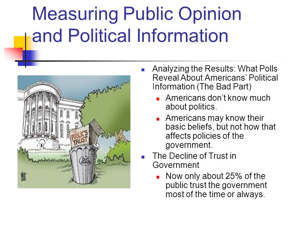 public opinion and political action essay