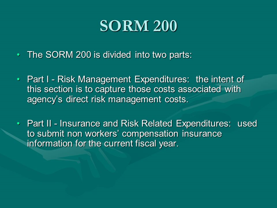 SORM 200 The SORM 200 is divided into two parts: