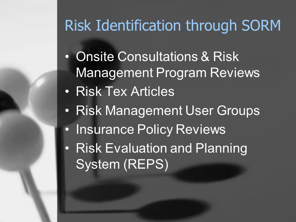 Risk Identification through SORM